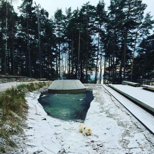 Skjermbilde 2016-12-01 12.13.19.png