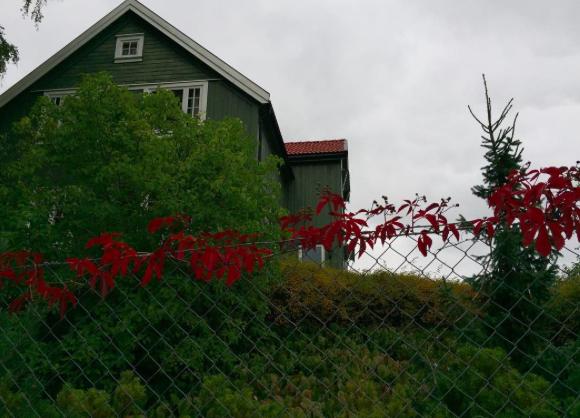 Skjermbilde 2017-09-29 11.27.23.png